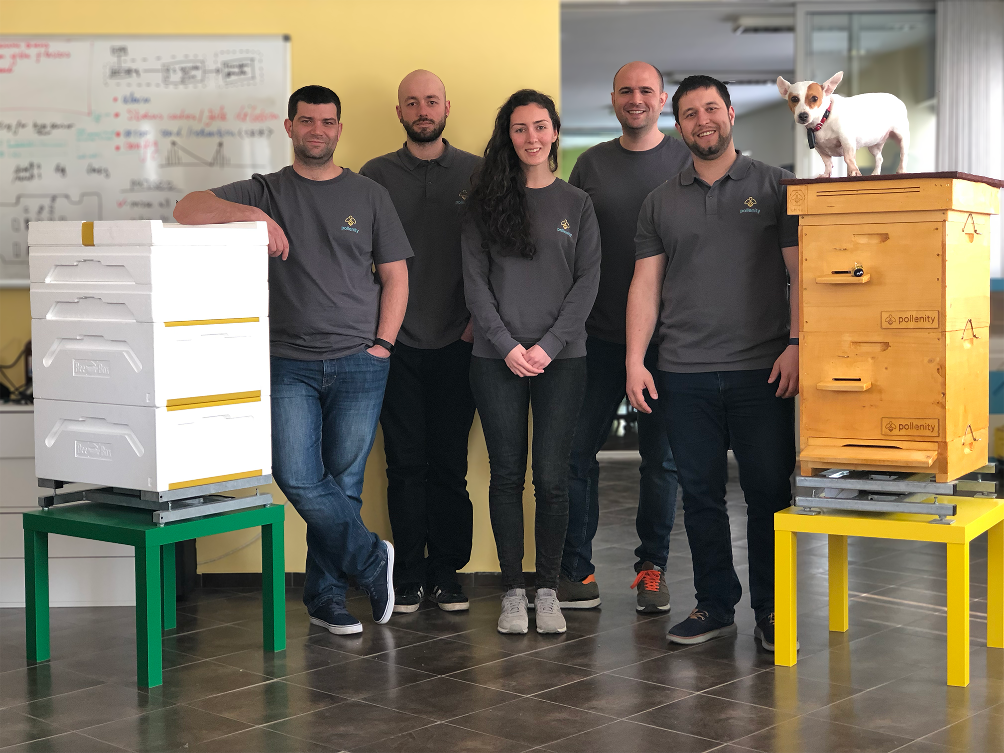 The team at Pollenity bee tech startup.