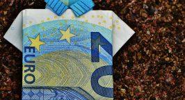 A 20 Euro bill folded up into a shirt