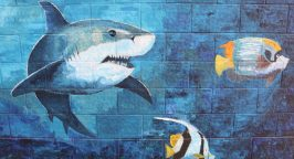Fish and shark mural