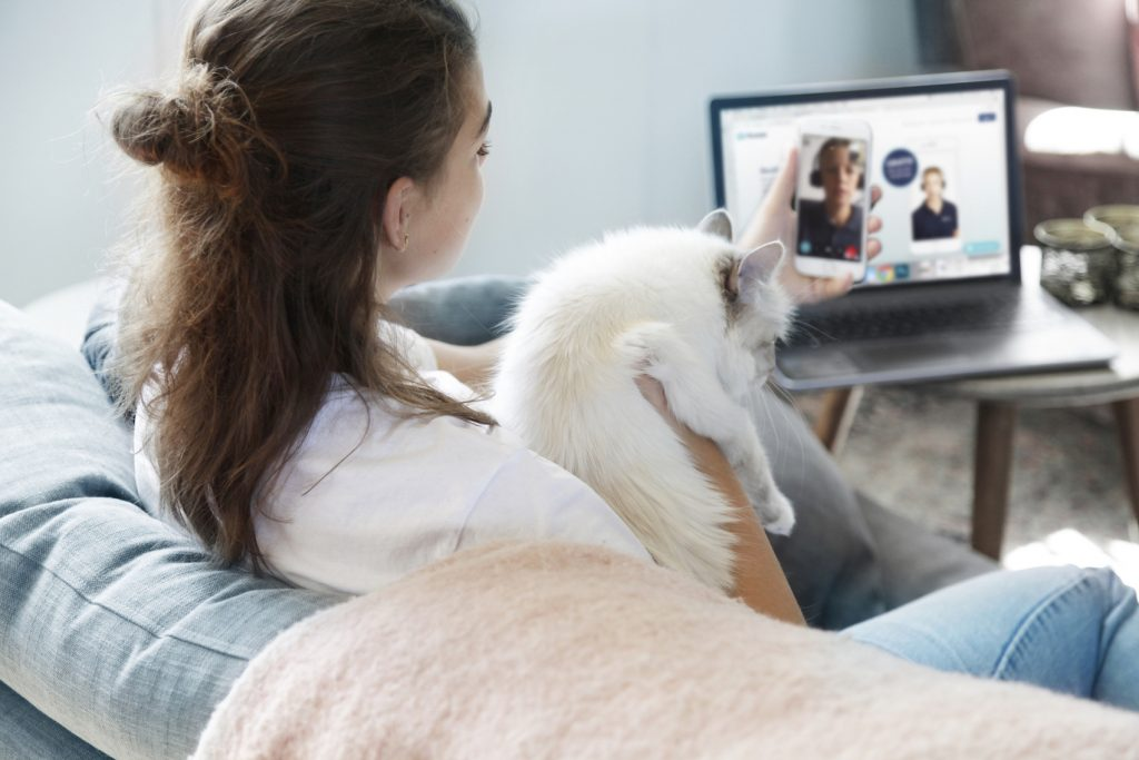 A FirstVet pet consultation.