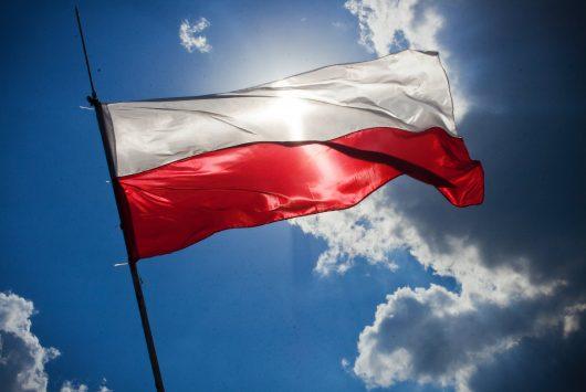 Teaser imagery for Polish startups