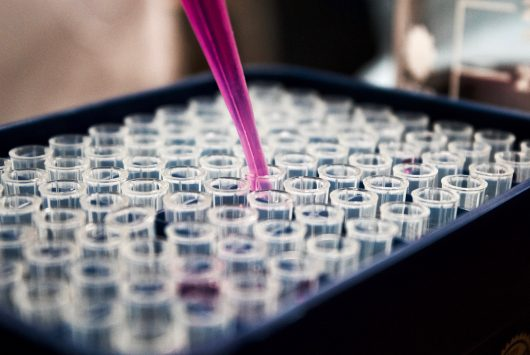 Picture of lab test tubes being filled