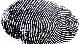 Image of a fingerprint