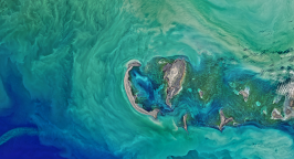 Satellite picture of an island and the ocean