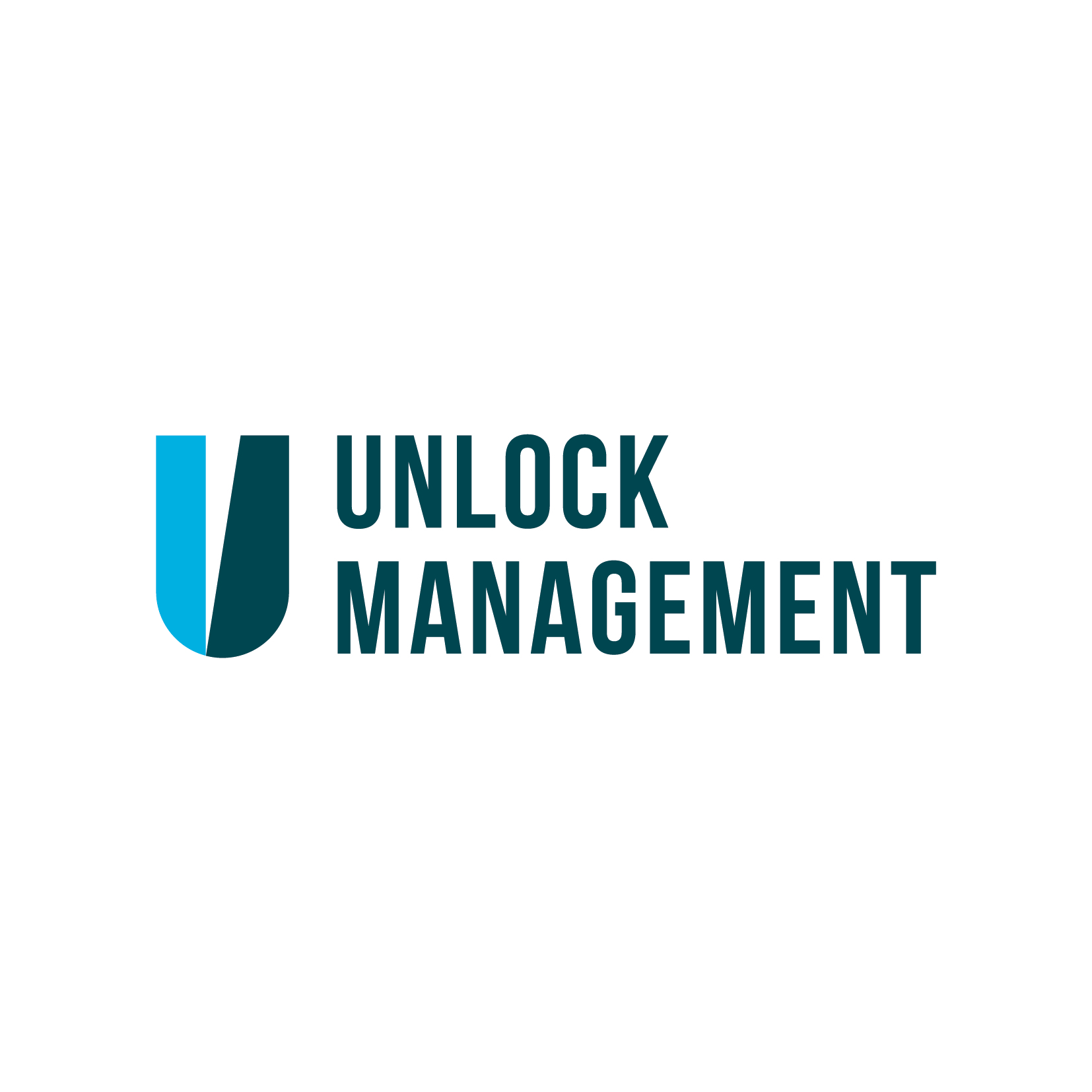 Unlock Management logo