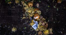 Photo of food waste on floor