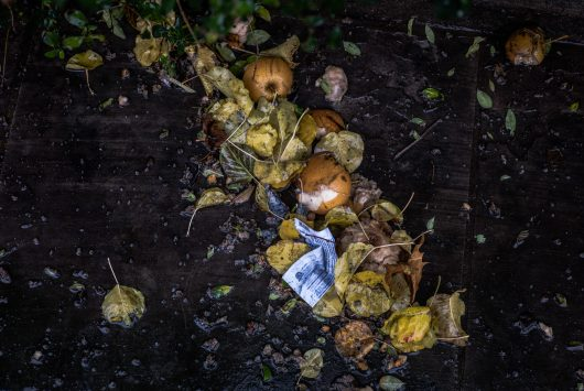 Photo of food waste on floor