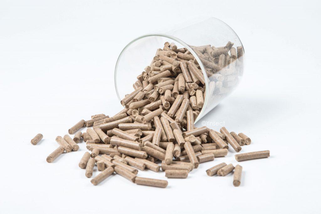 Ynsect's Ynfrass pellets