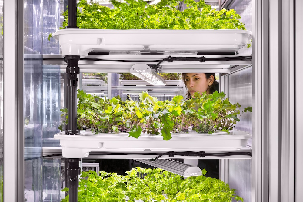 Vertical farming crops