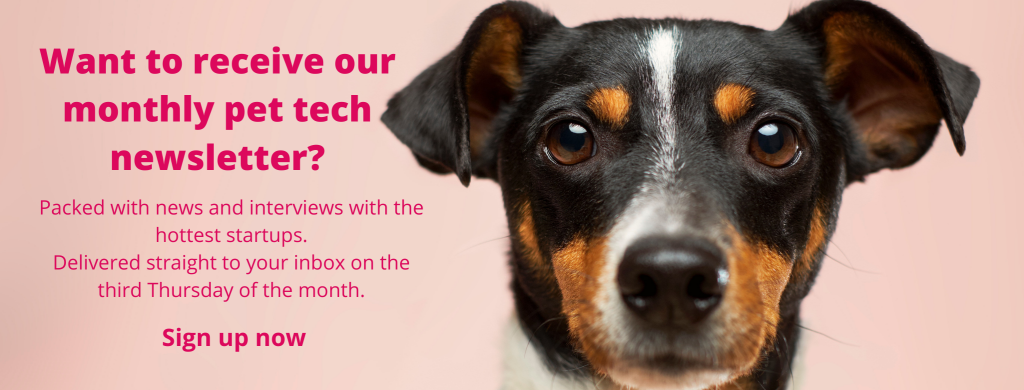 Sign up for the Sifted pet tech newsletter