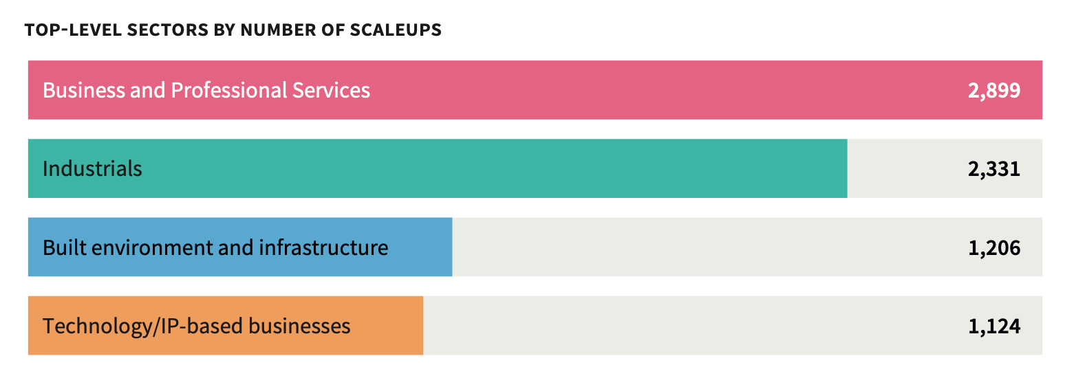 Top Scaleups by sectors in the UK
