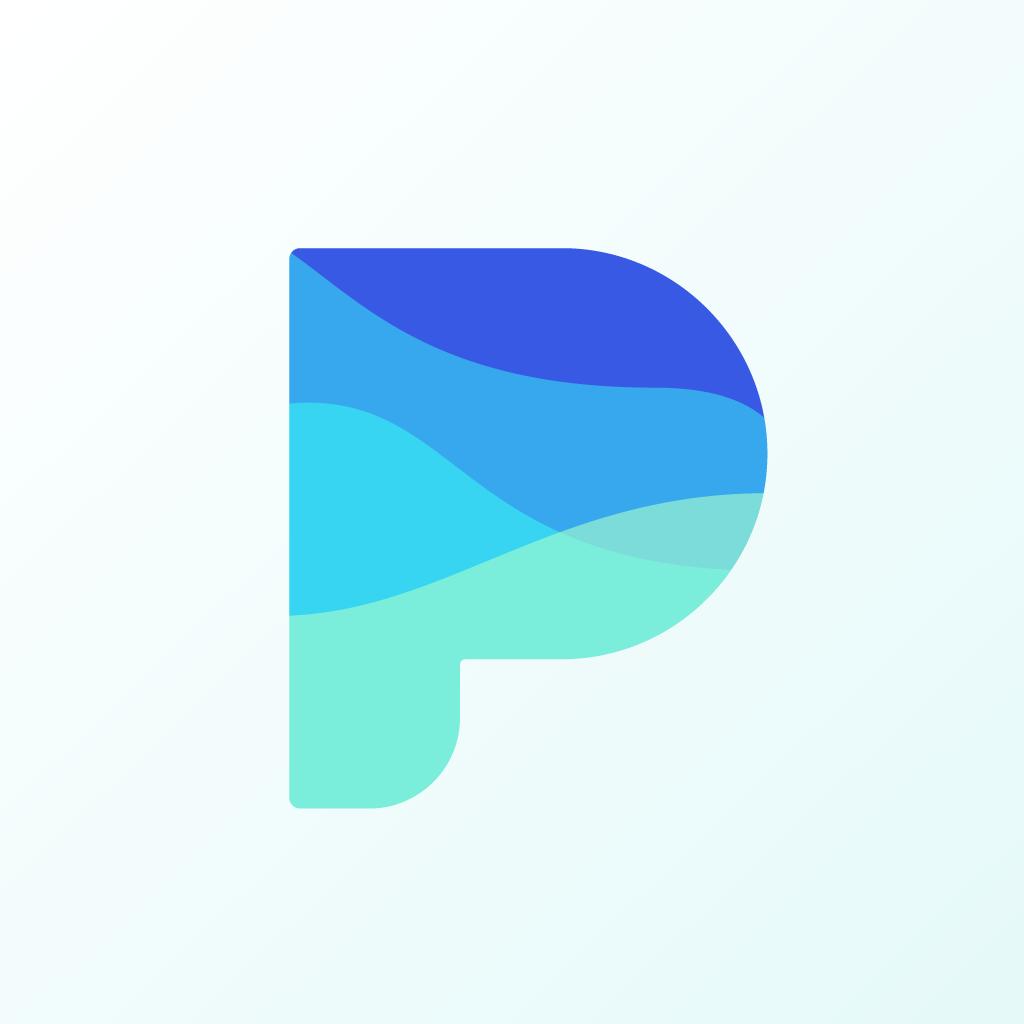 Payflow's logo