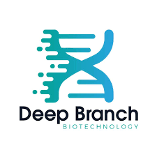 Deep Branch's logo