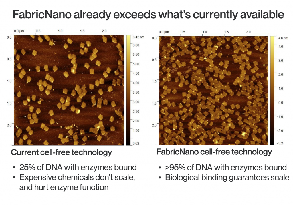 FabricNano image of enzyme placement